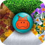Hippo Seasons Icon